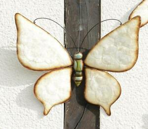 Decor Butterfly With Shell Inserts, Wall Decoration Softshell Butterfly