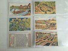 trade cards erdal kwak series 117 history 1920s full set