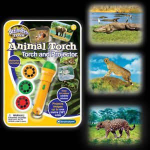 Animal Torch & Projector - Wildlife Zoo Kids Children
