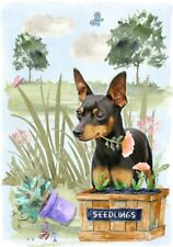 "Miniature Pinscher Dog (4"" x 6"") Blank Card/ Notelet Design By Starprint"