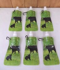 6 Collapsible Foldable Reusable Water Ice Bottles ~ Camp ~ BPA Free ~ New