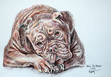 Chocolate Dog Dogue de Bordeaux original watercolor painting pet mastiff ginger
