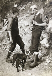 Antique Snapshot Photo Boston Terrier Dogs Early 1900's Hiking Dudes Fashion