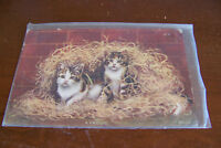 Rare Vintage Antique Postcard Humorous Comic Funny Cats Kitties Kittens A Frolic