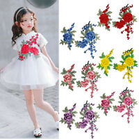 Grape Flower Embroidery Patch Sew On Badge DIY Clothes Dress Applicque Craft AU