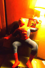 Spiderman 12 Inch 2004 Action Figure Plush Doll Washable Claw Machine Prize Toy