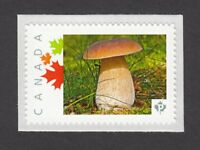 MUSHROOM = Picture Postage stamp MNH Canada 2014  [p6sn17]