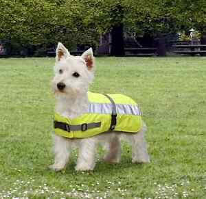 Petlife Flecta Hi-vis Dog Jacket/Coat Yellow - keep dog safe and warm in dark