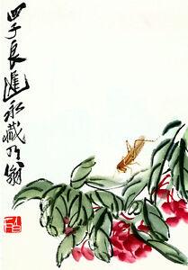 Grasshopper & Flowers 15x22 Chinese Print Chi Pai Shih asian art