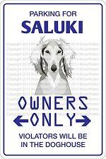 Metal Sign Parking For Saluki 8� x 12� Aluminum Ns 464