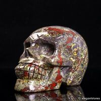 721g Large Natural Dragon Blood Stone Quartz Crystal Hand Carved Skull Healing