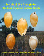 Jewels of the Everglades-The Fossil Cowries Of Southern Florida Book Lot# 6351
