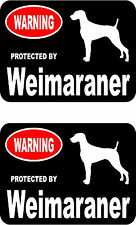 2 protected by Weimaraner dog car bumper home window vinyl decals stickers