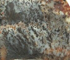 "Premium Canadian River Plume Agate Slab Texas 4.3"" X 4"" X 1/4"" 156 Grams"