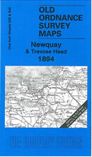 Old Ordnance Survey Mappa Newquay, perranporth, St Agnes & trevose HEAD 1894