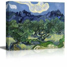 "Olive Trees by Vincent Van Gogh - Oil Painting Reproduction on Canvas- 16"" x 20"""