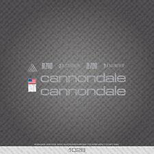 01028 Cannondale R700 Bicicletta Adesivi-Decalcomanie-Transfers-Argento