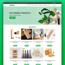 Dropshipping Store Eco Friendly Goods Turnkey Website Business For Sale