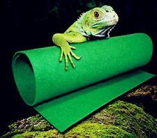 Reptiles Carpet Terrarium Liner, Fmji Bearded Dragon Accessories Reptiles Cage