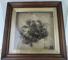 ANTIQUE VICTORIAN WOVEN HAIR MOURNING SHADOW BOX WALL ART FRAMED 19 CENTURY