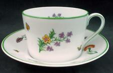 Tiffany TIFFANY GARDEN Cup & Saucer Bone China Rare Pattern GREAT CONDITION