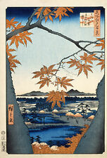 Japanese Art: Hiroshige: 100 Famous Views of Edo - Maple Trees - Fine Art Print