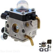Carburetor Fuel Air Filter Gasket Spark Plug Blower Tool Kit New