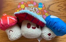 Bark Box Alice's Magic Mushrooms 🍄NWT