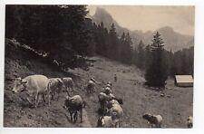 SUISSE SWITZERLAND canton NEUCHATEL - paturages, carte de Delachaux et Niestlé
