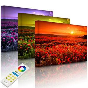 Beleuchtetes Bild LED Leuchtbild - Mohnblütenfeld bei Sonnenuntergang