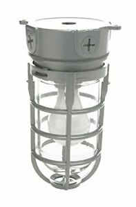 Ceiling Mount Cage Retro Industry Light Fixture Commercial Explosion Proof Style