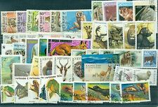 ANIMAUX SAUVAGES - WILD FAUNA  Lot d'environ 50 timbres 1