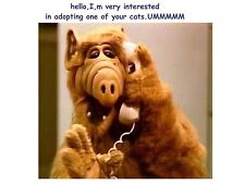 Flexible Fridge Magnet Photo Of  A  ALF NOVELTY