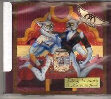 (BX177) Aerosmith, Falling In Love (Is Hard On The Knees) - 1997 DJ CD