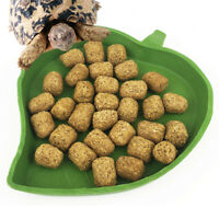 Reptile Water Food Dish Bowl Plastic Gecko Meal Worm Feeder Leaf Shape S/L