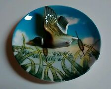 Lefton Mallard Duck Plate #213 3D