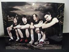 Bullet For My Valentine 11x14 COLOR Photograph #2