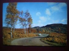 POSTCARD PERTHSHIRE ABERFOYLE - THE DUKE'S ROAD TO THE TROSSACHS