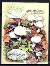 Champignons Togo (25) bloc oblitéré