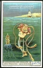 Jellyfish Meduse Kwallen Sea Ocean 1930s Trade Ad Card