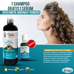 Shampoo de Bergamota, Moringa y Romero resultados comprobados gratis 1 serum