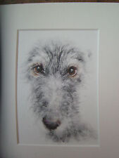 Lurcher, dog , print of original painting in  Mount