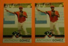 2 - 2013 Brandt, Greensboro Grasshoppers - ANTHONY GOMEZ
