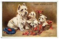 Antique colour printed postcard terrier dog & puppies Three Bonnie Bairns