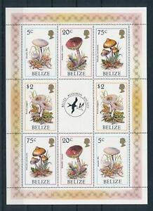 [104866] Belize 1986 Mushrooms pilze champignons Miniature sheet MNH