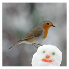Robin On Snowman Sound Card - plays beautiful birdsong when opened!