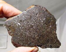 108 gram Vaca Muerta mesosiderite meteorite endcut - Chile