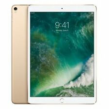 Apple iPadPro Wi-fi 256gb - G Mpf12ty/a