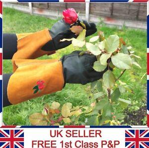 LTG Ladies Garden Gardening Leather Long Gloves Thorn Resistance Work DIY Safety