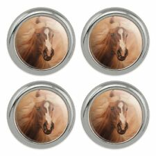 Set of 4 Horse Open Stadium Show Jumping Metal Craft Sewing Novelty Buttons
